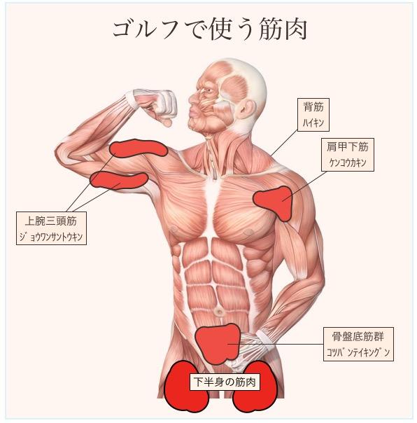 筋肉痛の治し方
