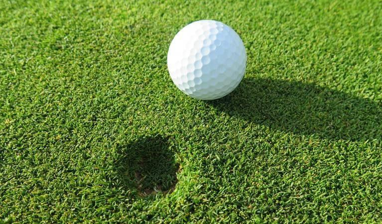 Green pitch mark