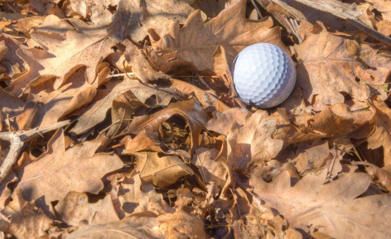 Cheap golf course