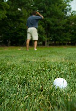 Golf rough