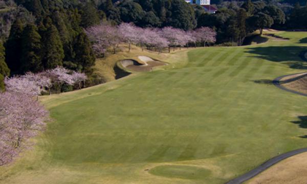 Chiba Sakuranosato Golf Club